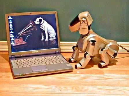 aibo-dog-640x480